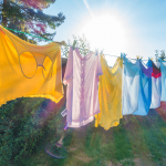 Shirts drying on clothes line