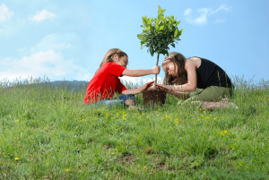Two girls planting tree in field